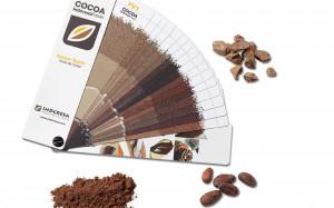 какао-2